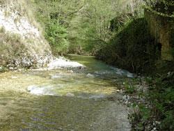 Incontro pubblico - monumento naturale del fiume farfa